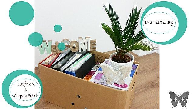 organisiert durch den umzug die ordnungsfee jennifer. Black Bedroom Furniture Sets. Home Design Ideas