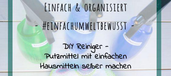 DIY Reiniger